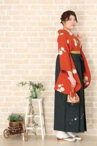 帯屋の袴新作